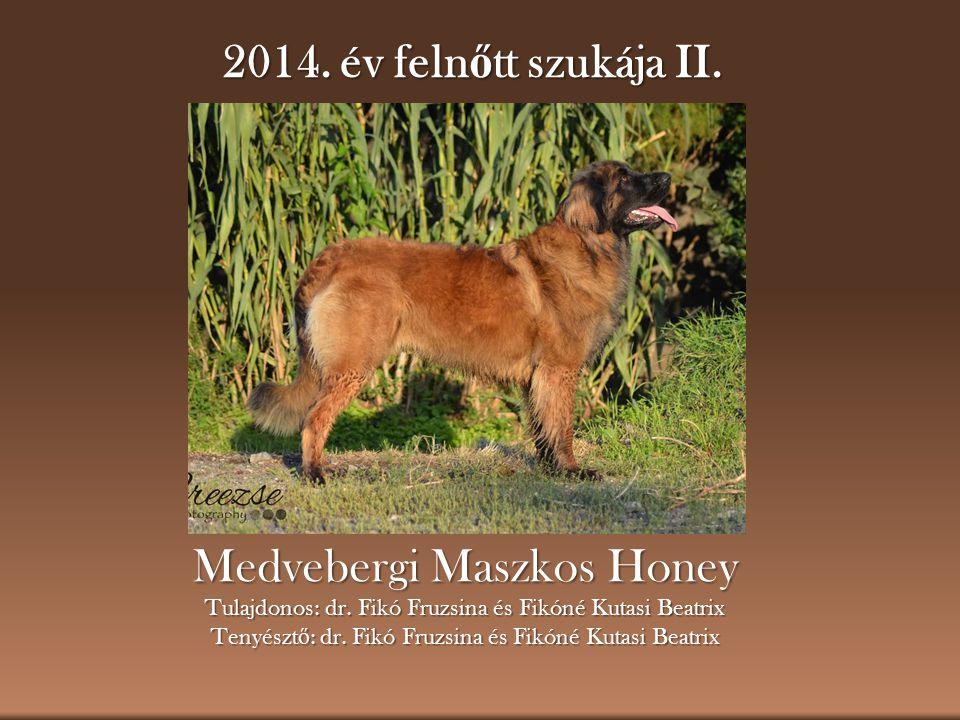 Medvebergi Maszkos Honey