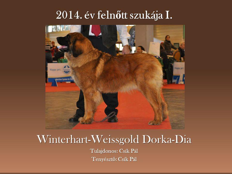 Winterhart-Weissgold Dorka-Dia