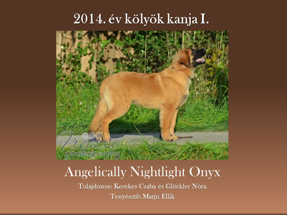 Angelically Nightlight Onyx