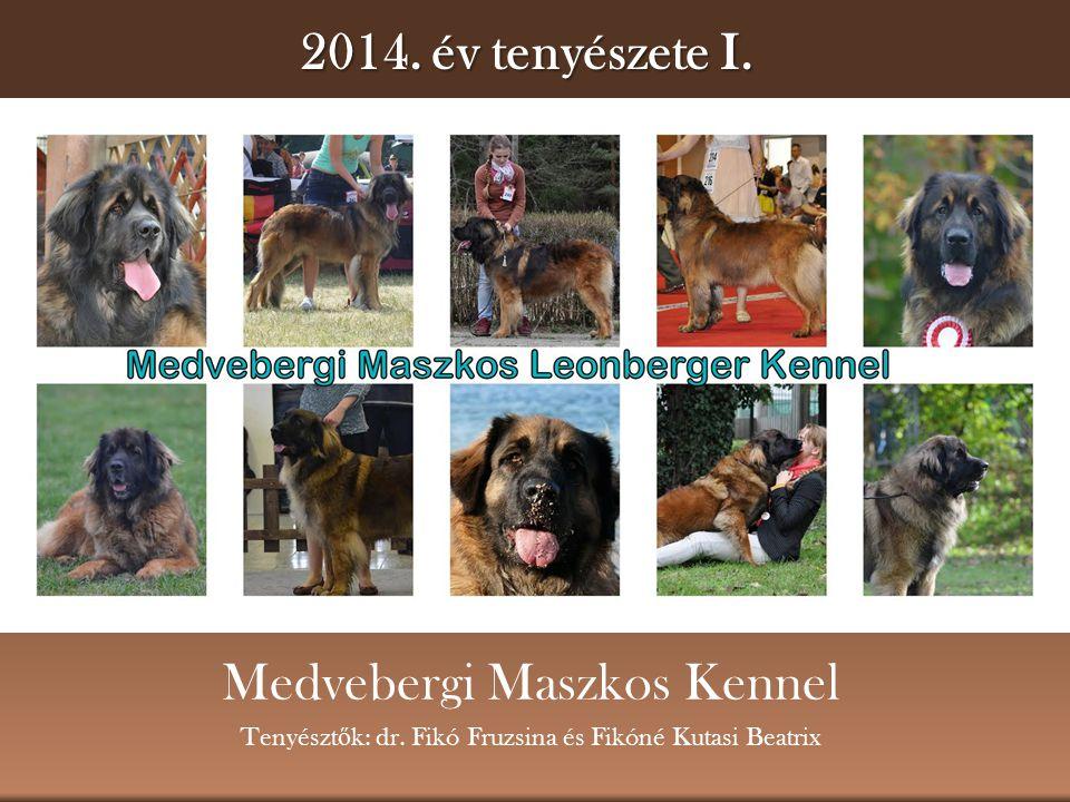 Medvebergi Maszkos Kennel