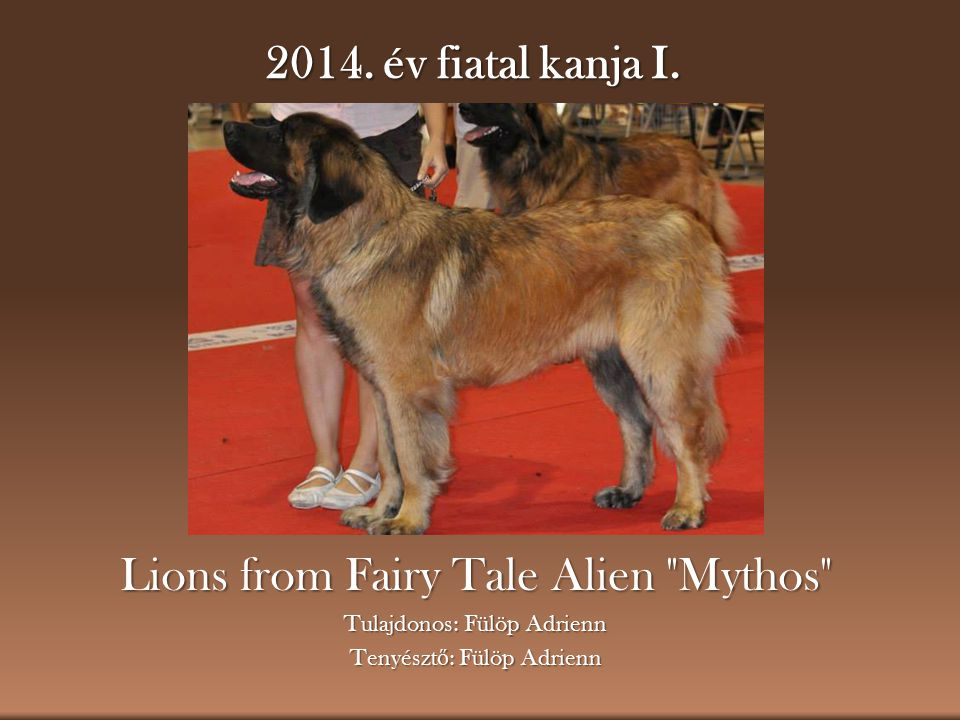 Lions from Fairy Tale Alien Mythos