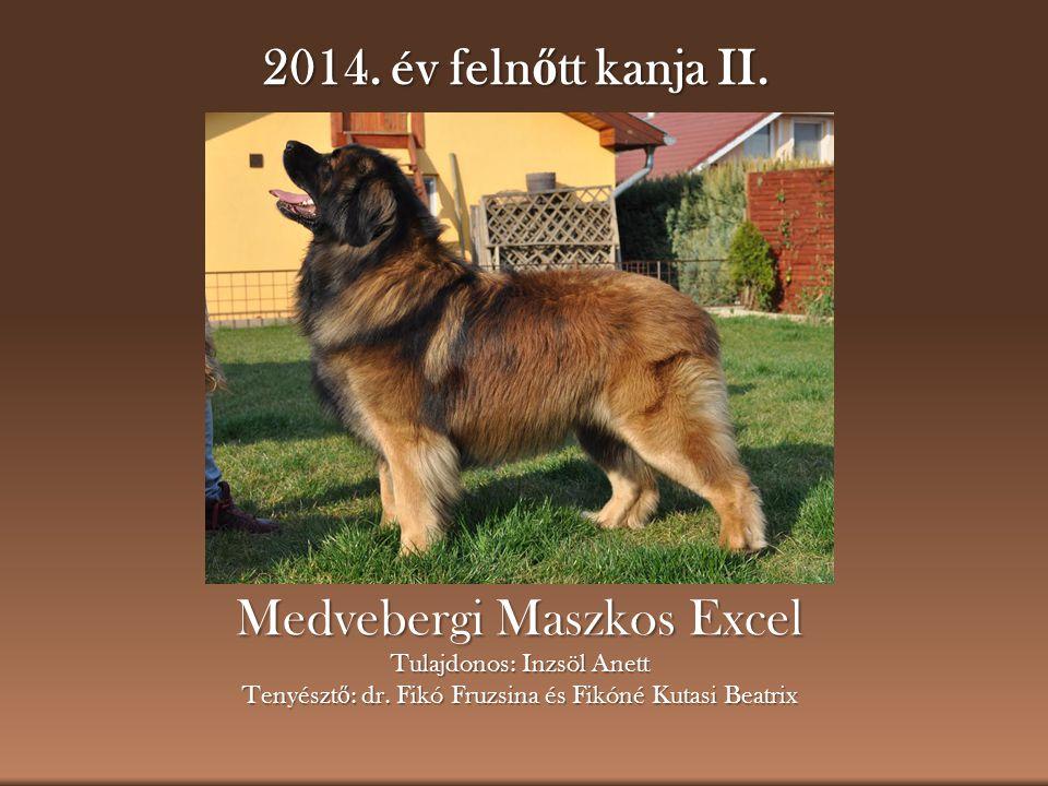 Medvebergi Maszkos Excel