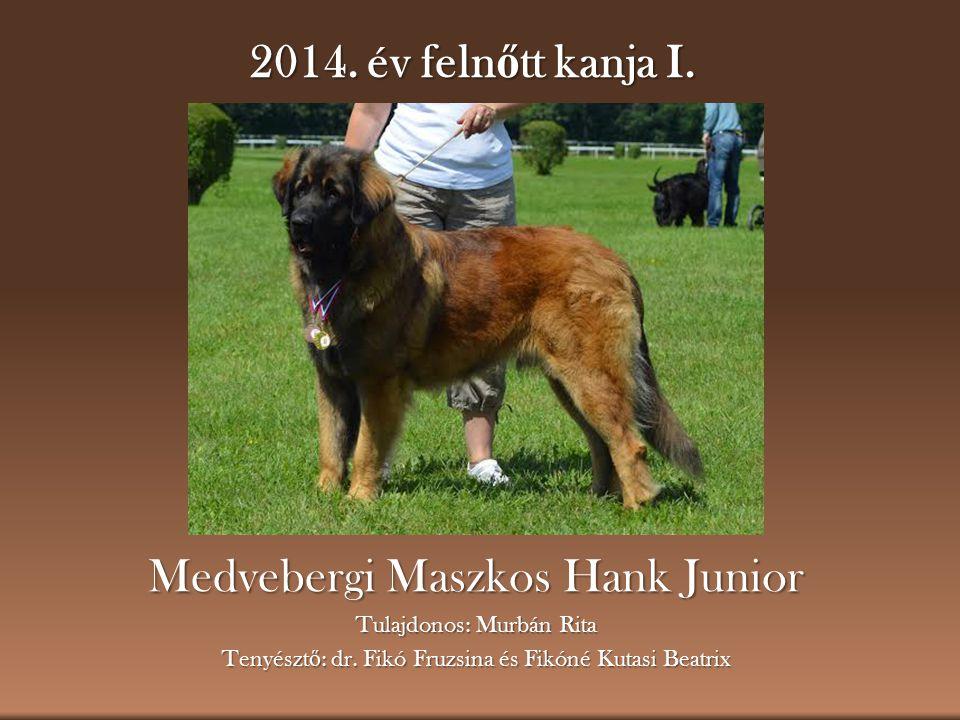 Medvebergi Maszkos Hank Junior