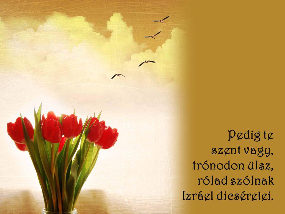 Pedig te szent vagy, trónodon ülsz, rólad szólnak Izráel dicséretei.