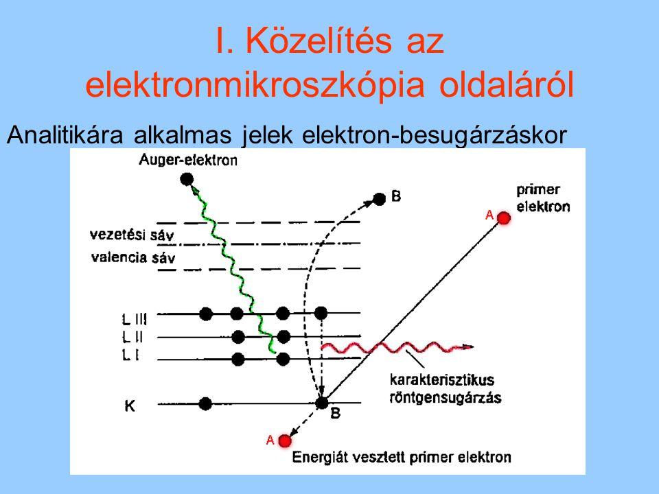 I. Közelítés az elektronmikroszkópia oldaláról