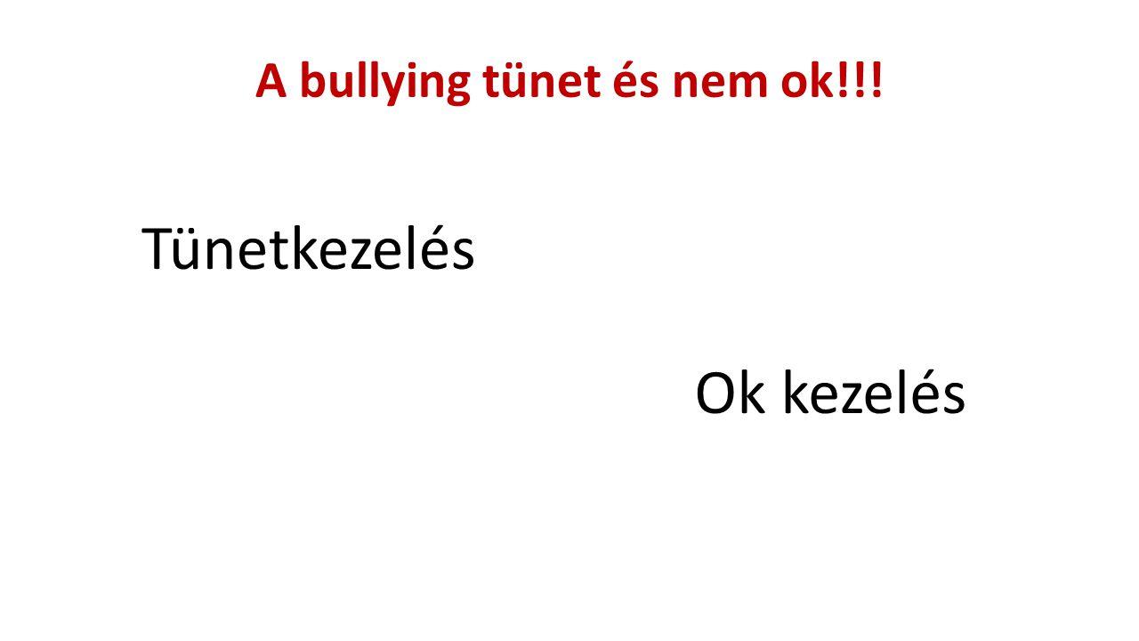 A bullying tünet és nem ok!!!