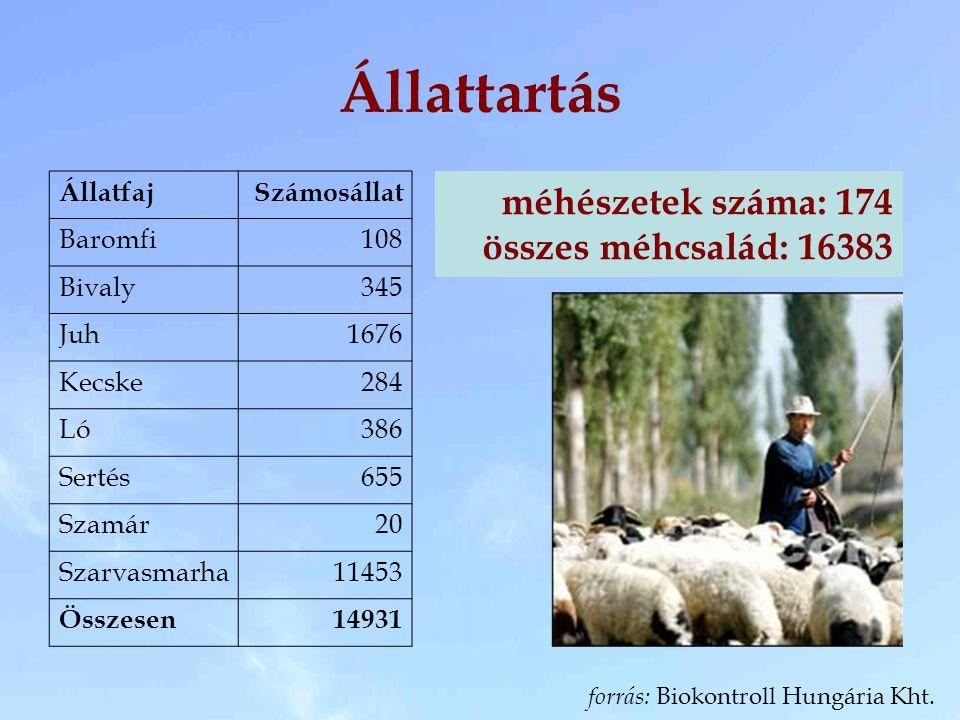 Állattartás méhészetek száma: 174 összes méhcsalád: 16383 Állatfaj