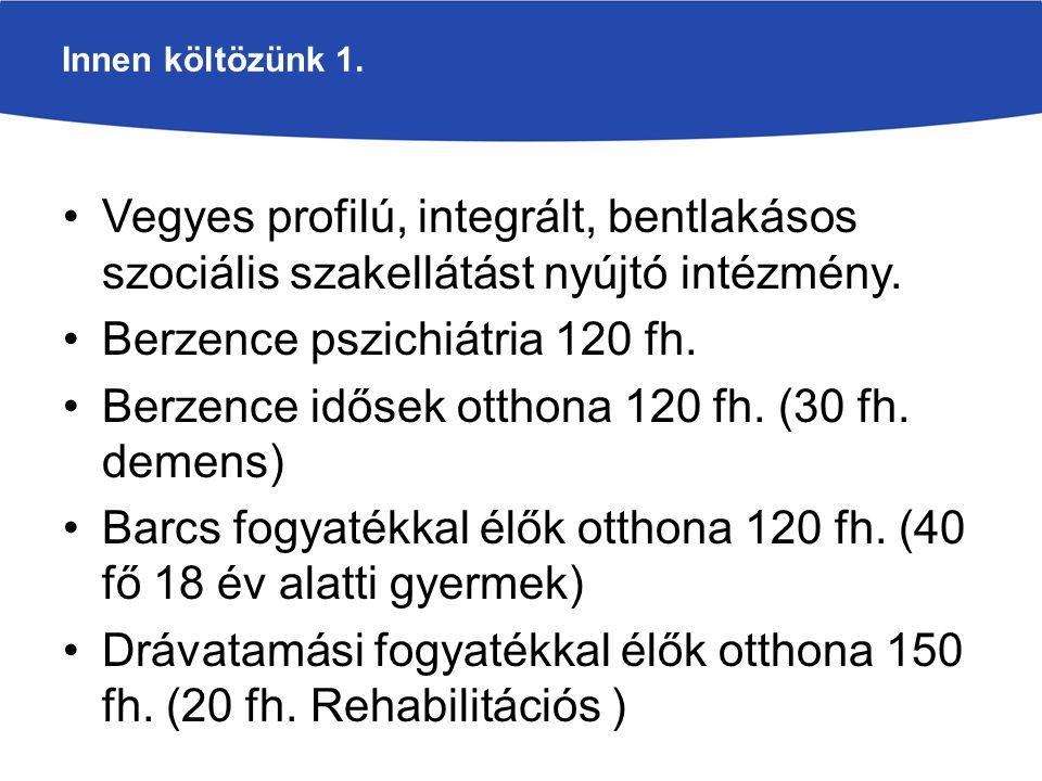 Berzence pszichiátria 120 fh.