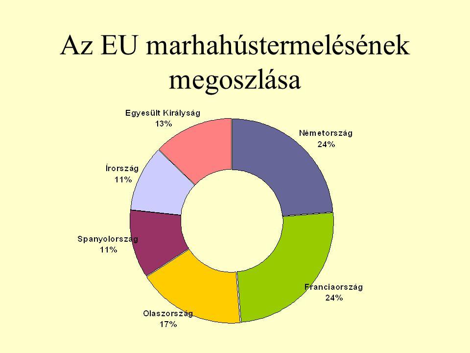 Az EU marhahústermelésének megoszlása