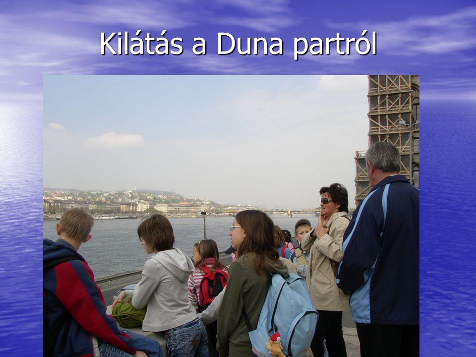 Kilátás a Duna partról