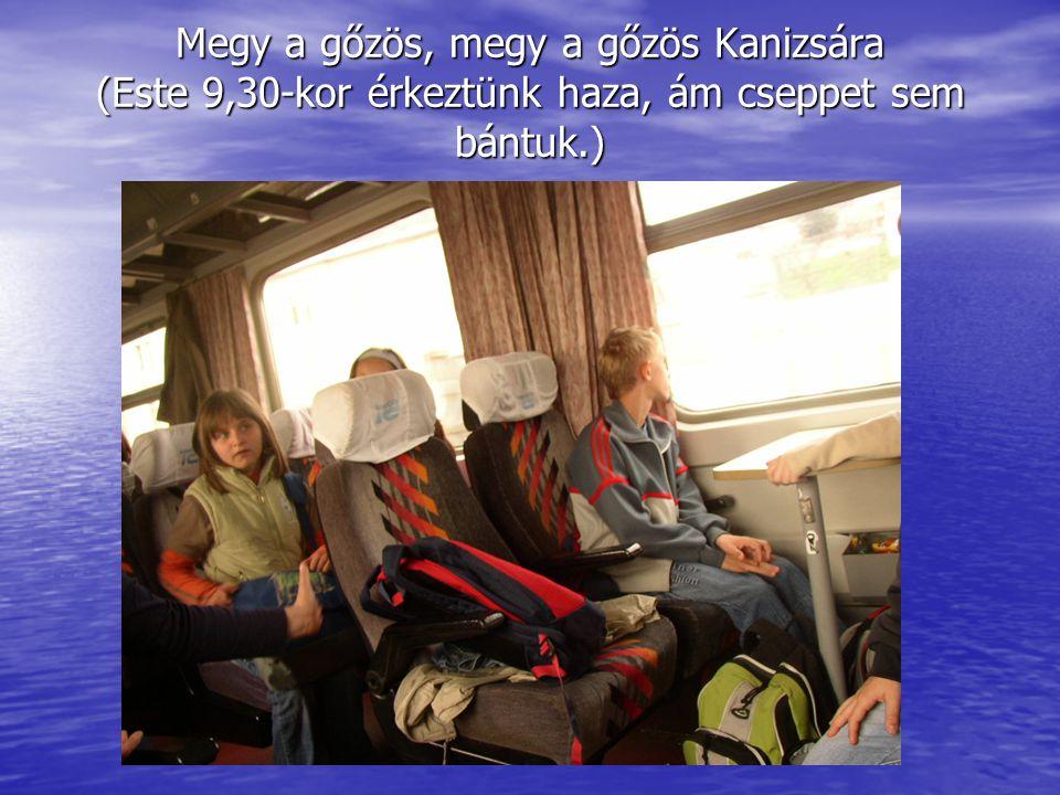 Megy a gőzös, megy a gőzös Kanizsára (Este 9,30-kor érkeztünk haza, ám cseppet sem bántuk.)