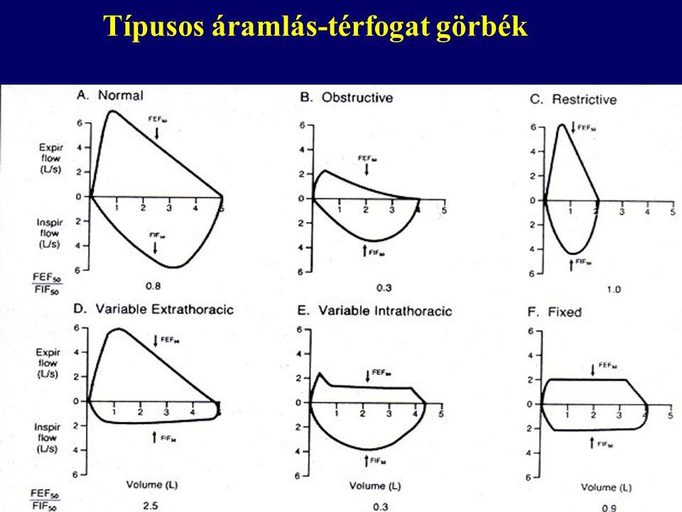 Típusos áramlás-térfogat görbék