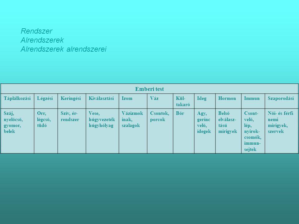 Alrendszerek alrendszerei