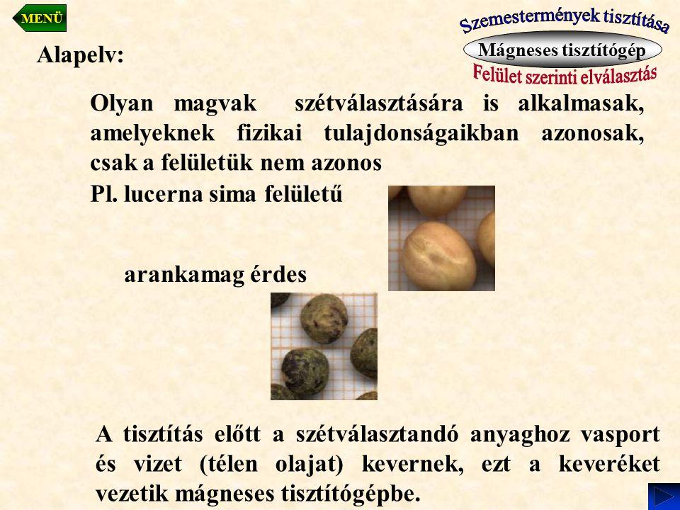 Pl. lucerna sima felületű