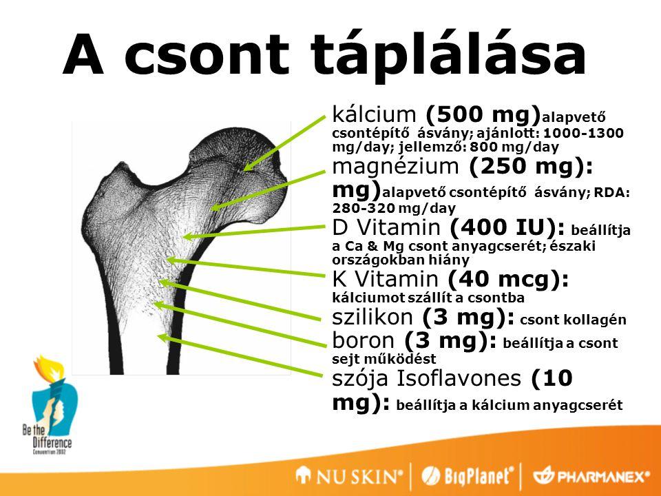 A csont táplálása kálcium (500 mg)alapvető csontépítő ásvány; ajánlott: 1000-1300 mg/day; jellemző: 800 mg/day.