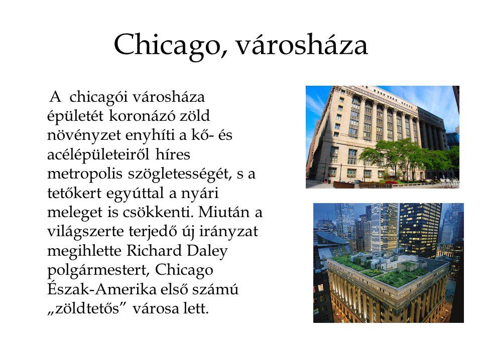 Chicago, városháza