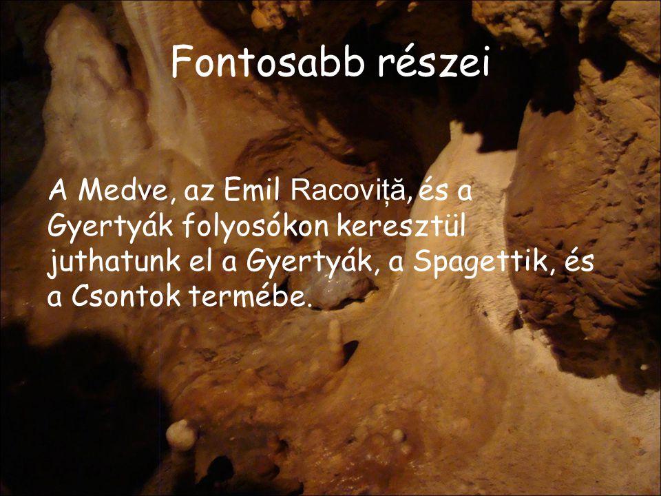 Fontosabb részei A Medve, az Emil Racoviţă, és a Gyertyák folyosókon keresztül juthatunk el a Gyertyák, a Spagettik, és a Csontok termébe.