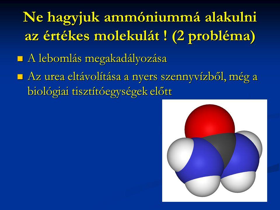 Ne hagyjuk ammóniummá alakulni az értékes molekulát ! (2 probléma)