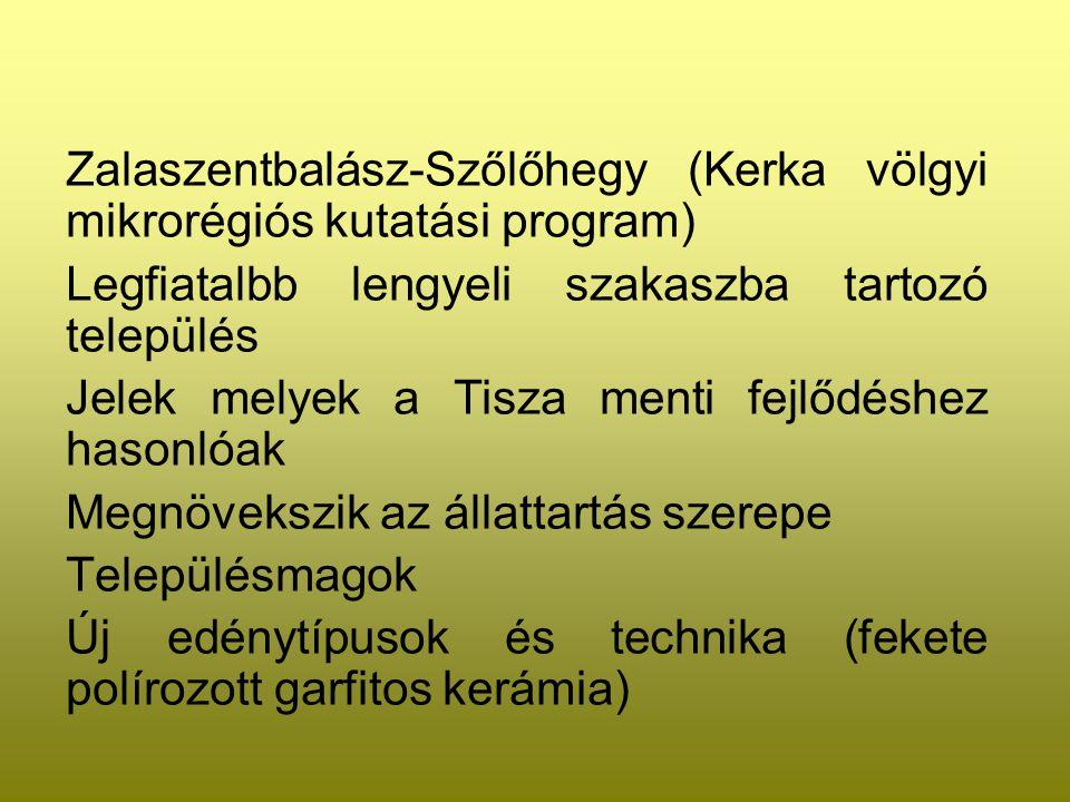 Zalaszentbalász-Szőlőhegy (Kerka völgyi mikrorégiós kutatási program)