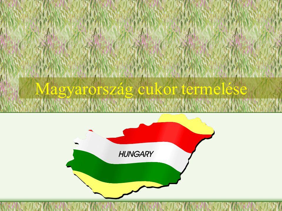Magyarország cukor termelése