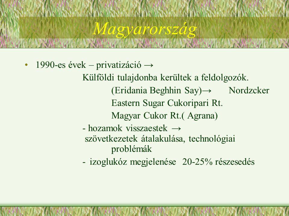 Magyarország 1990-es évek – privatizáció →