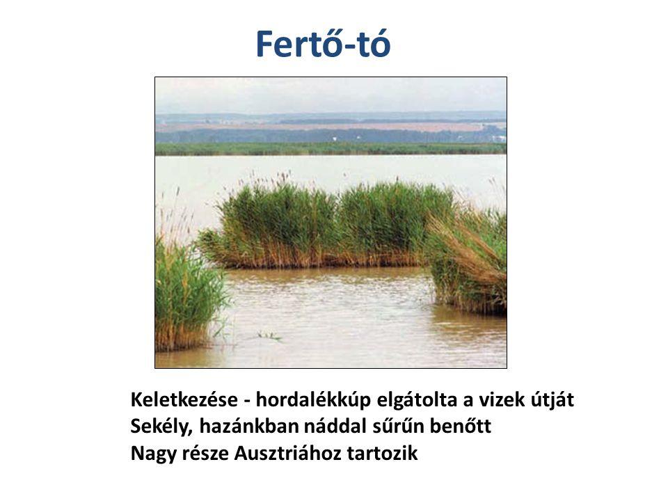 Fertő-tó Keletkezése - hordalékkúp elgátolta a vizek útját