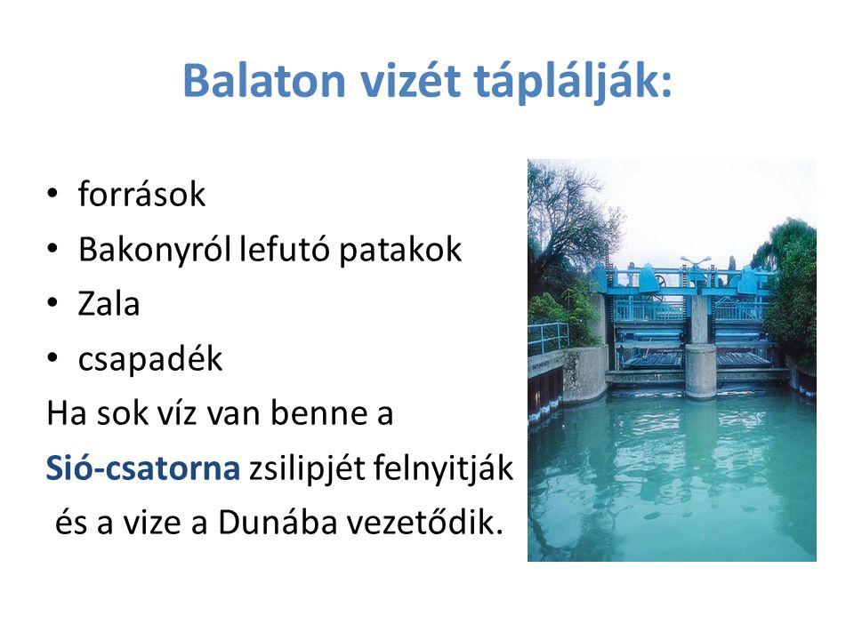 Balaton vizét táplálják: