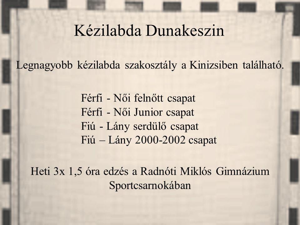 Heti 3x 1,5 óra edzés a Radnóti Miklós Gimnázium Sportcsarnokában