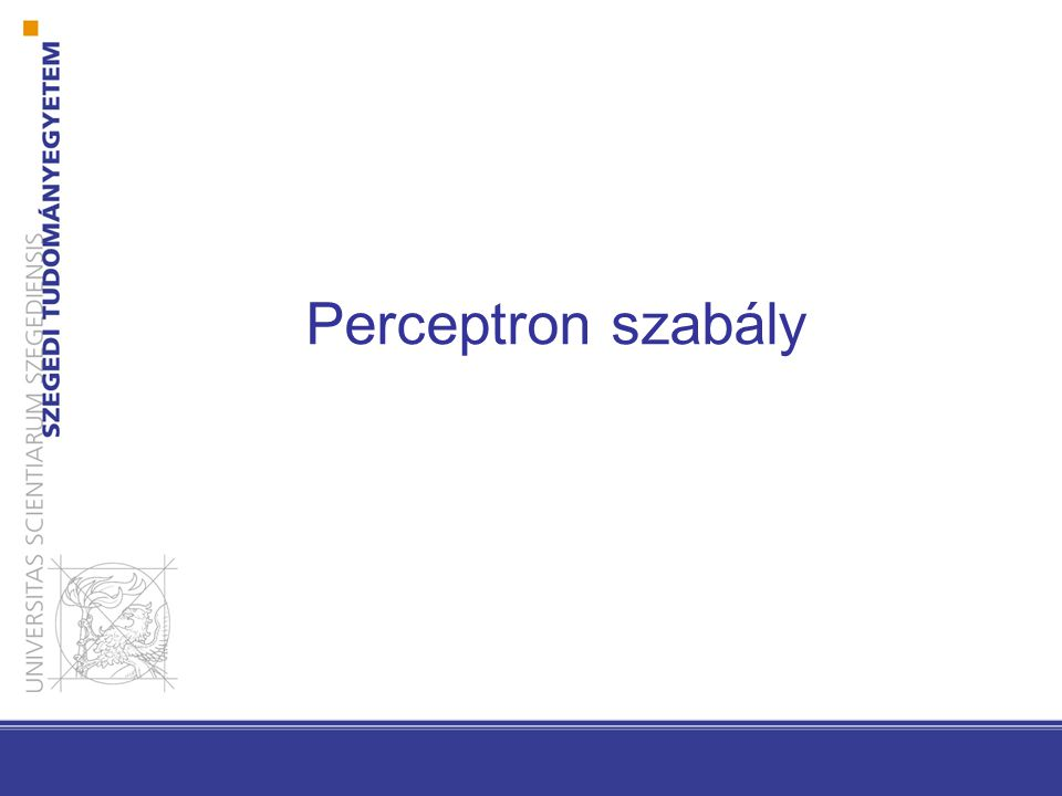 Perceptron szabály Kritérium Függvény: