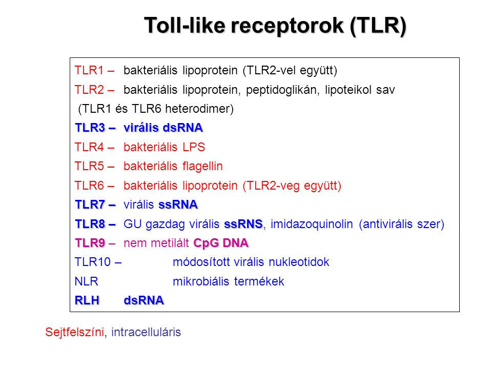 Toll-like receptorok (TLR)