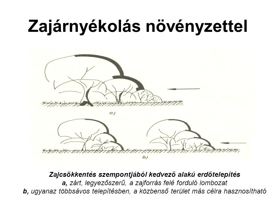 Zajárnyékolás növényzettel