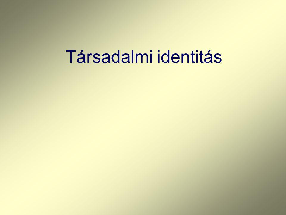 Társadalmi identitás