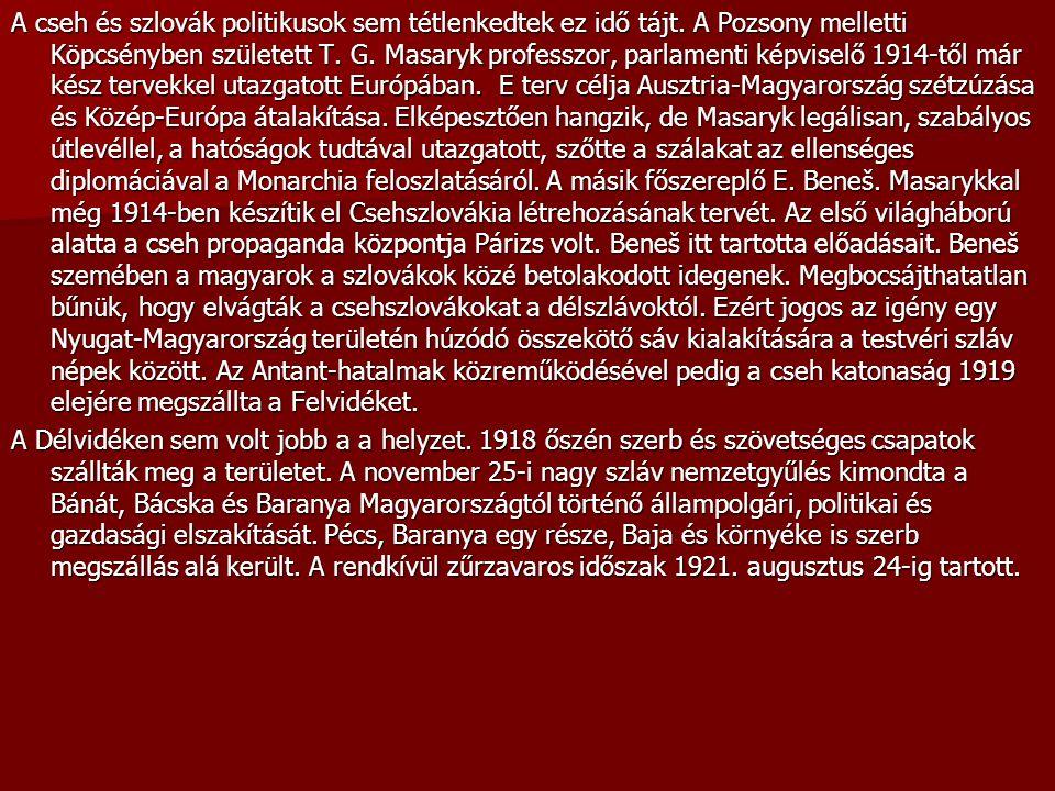 A cseh és szlovák politikusok sem tétlenkedtek ez idő tájt