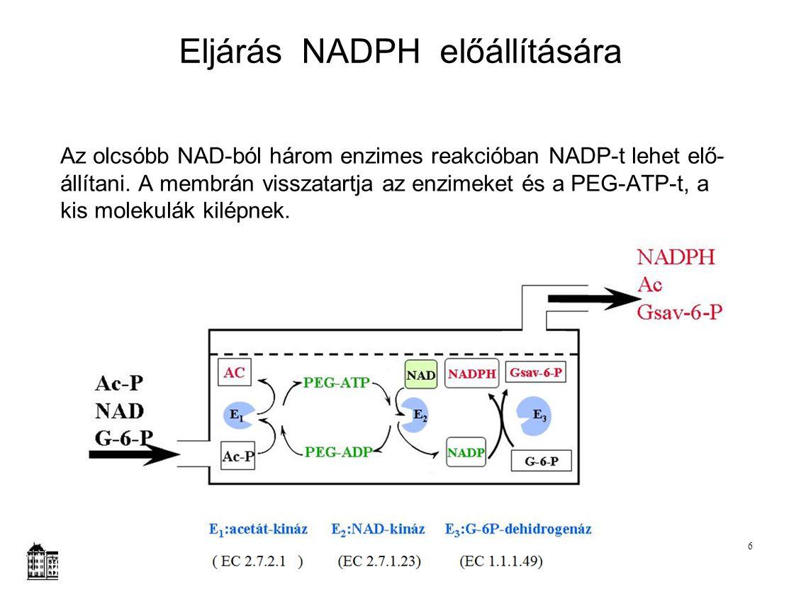 Eljárás NADPH előállítására