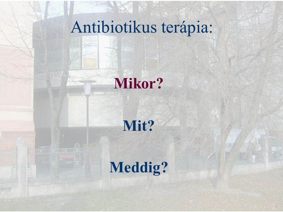 Antibiotikus terápia: