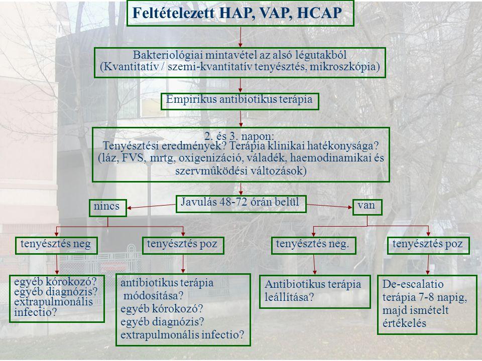 Feltételezett HAP, VAP, HCAP