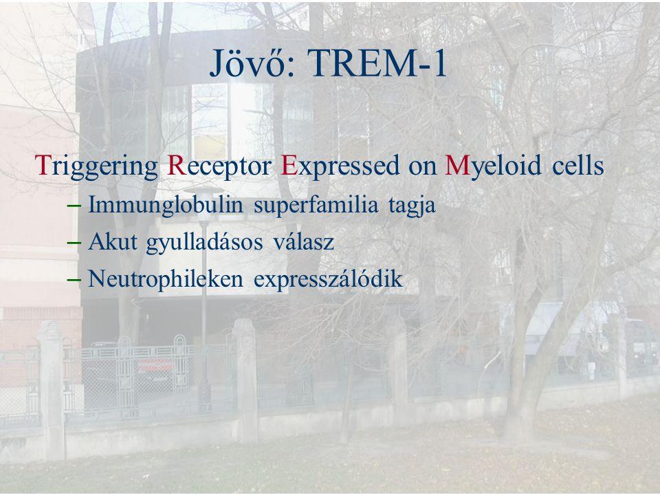 Jövő: TREM-1 Triggering Receptor Expressed on Myeloid cells