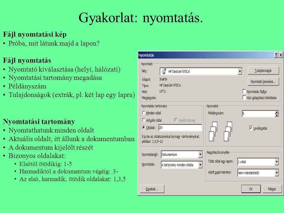 Gyakorlat: nyomtatás. Fájl nyomtatási kép Fájl nyomtatás