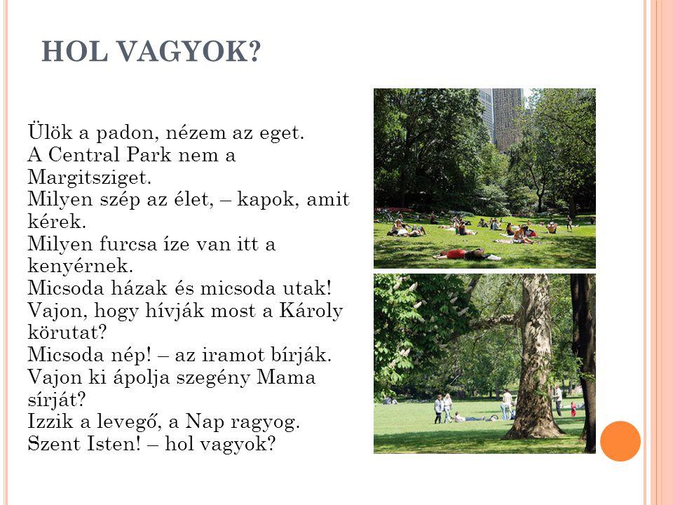 HOL VAGYOK