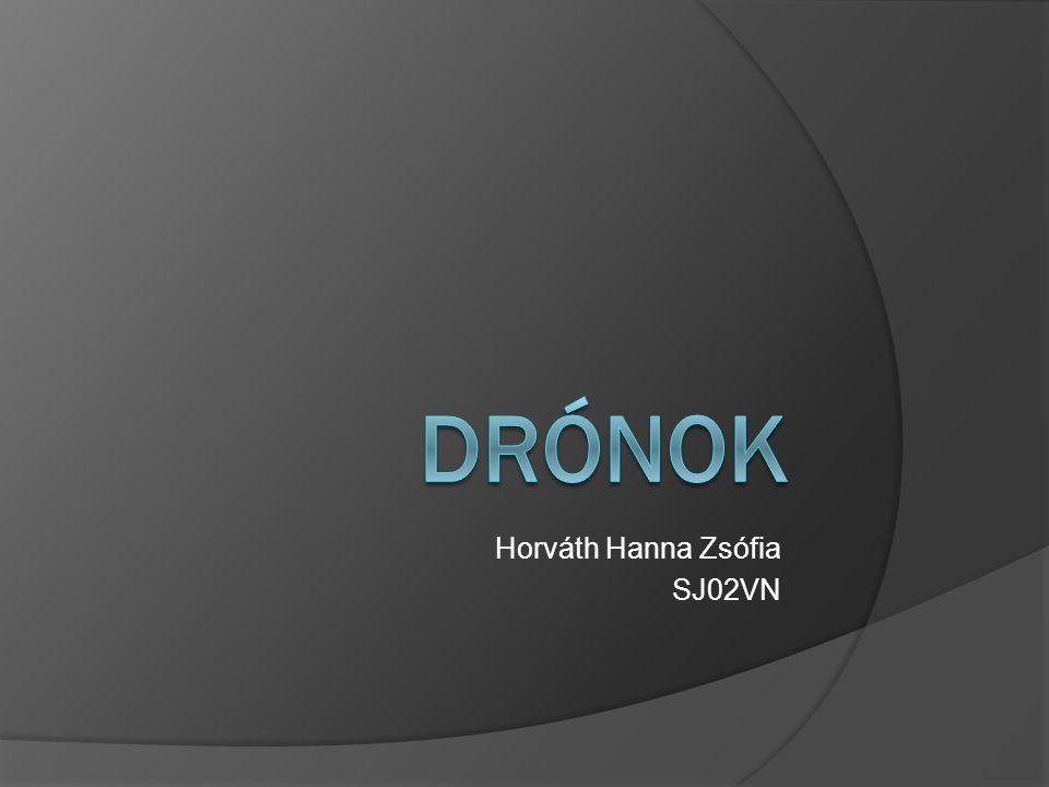 Horváth Hanna Zsófia SJ02VN
