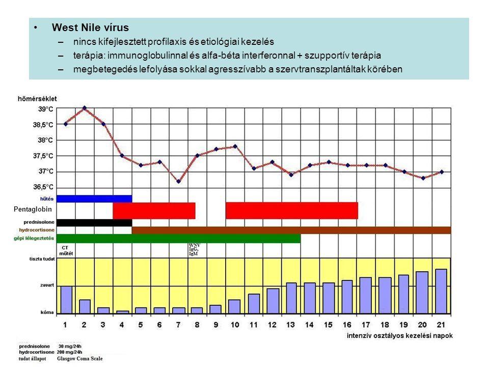 West Nile vírus nincs kifejlesztett profilaxis és etiológiai kezelés