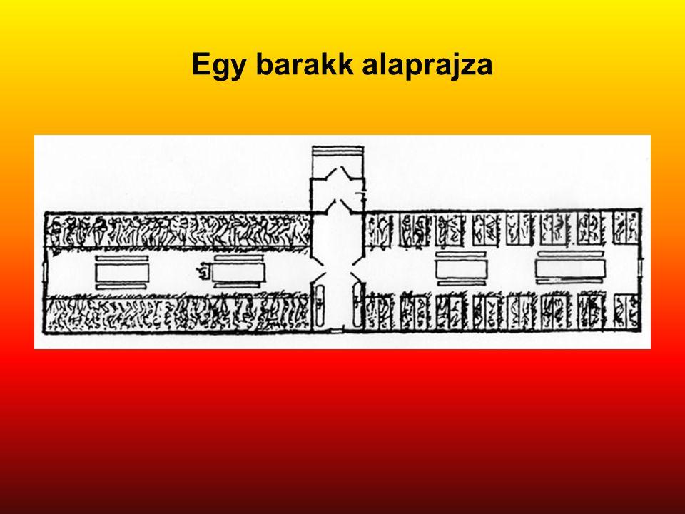 Egy barakk alaprajza Eredeti képaláírás: