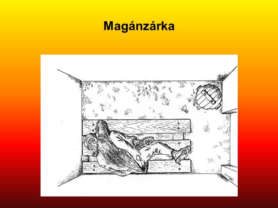 Magánzárka Eredeti képaláírás: