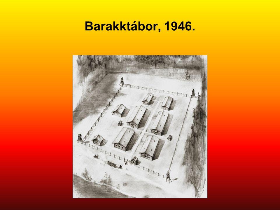 Barakktábor, 1946. Eredeti képaláírás: