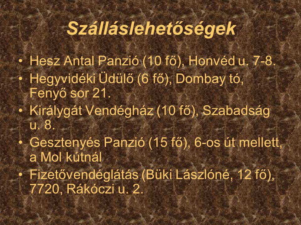 Szálláslehetőségek Hesz Antal Panzió (10 fő), Honvéd u. 7-8.
