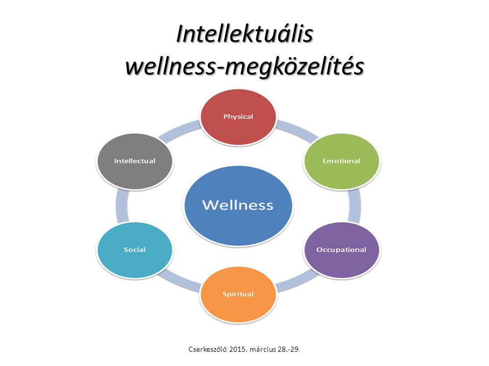Intellektuális wellness-megközelítés