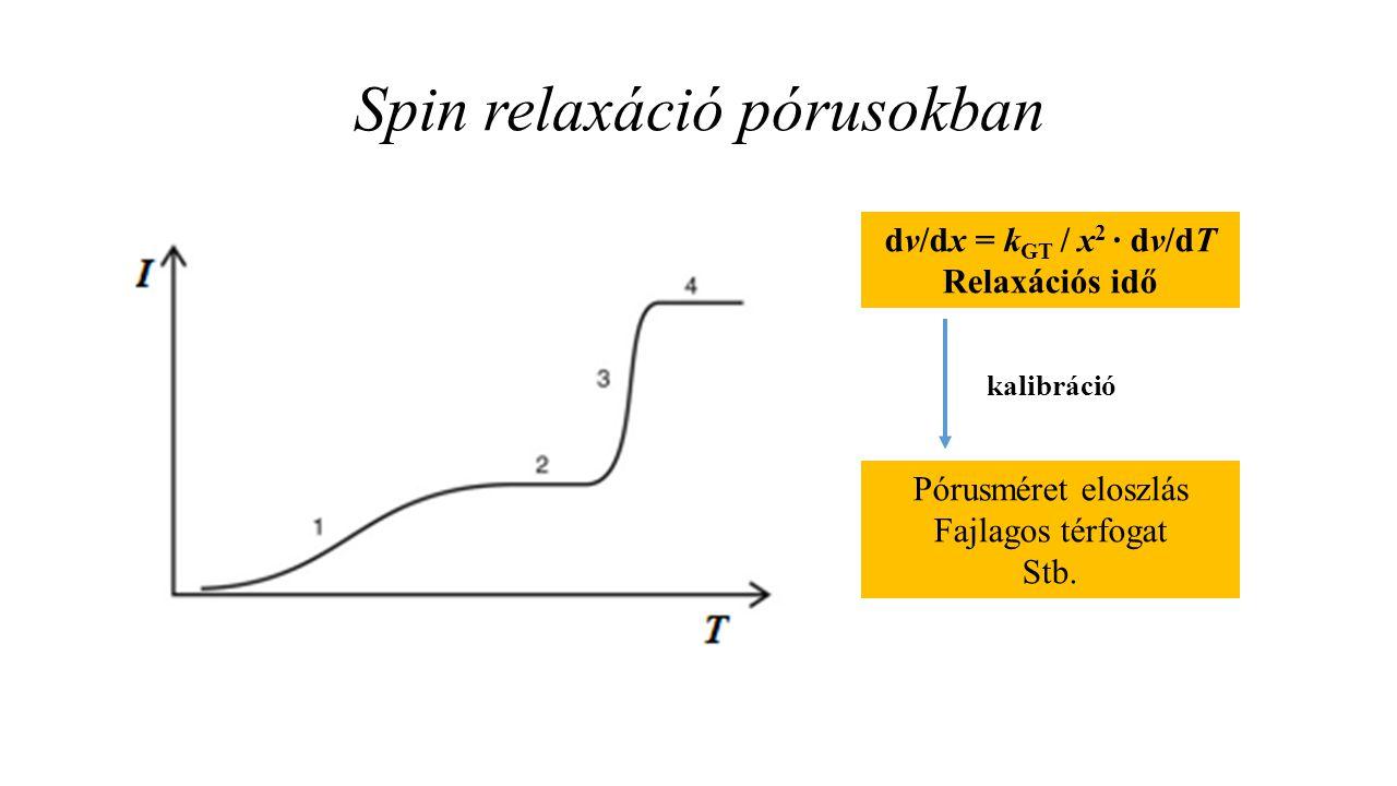 Spin relaxáció pórusokban