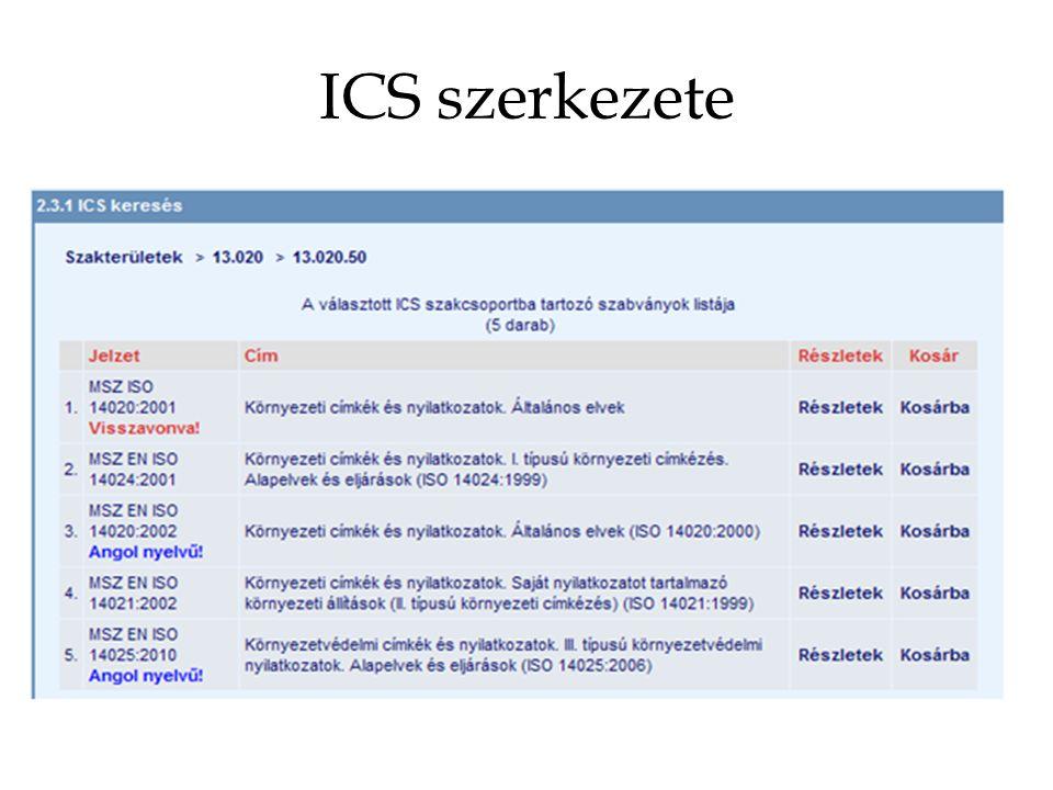 ICS szerkezete