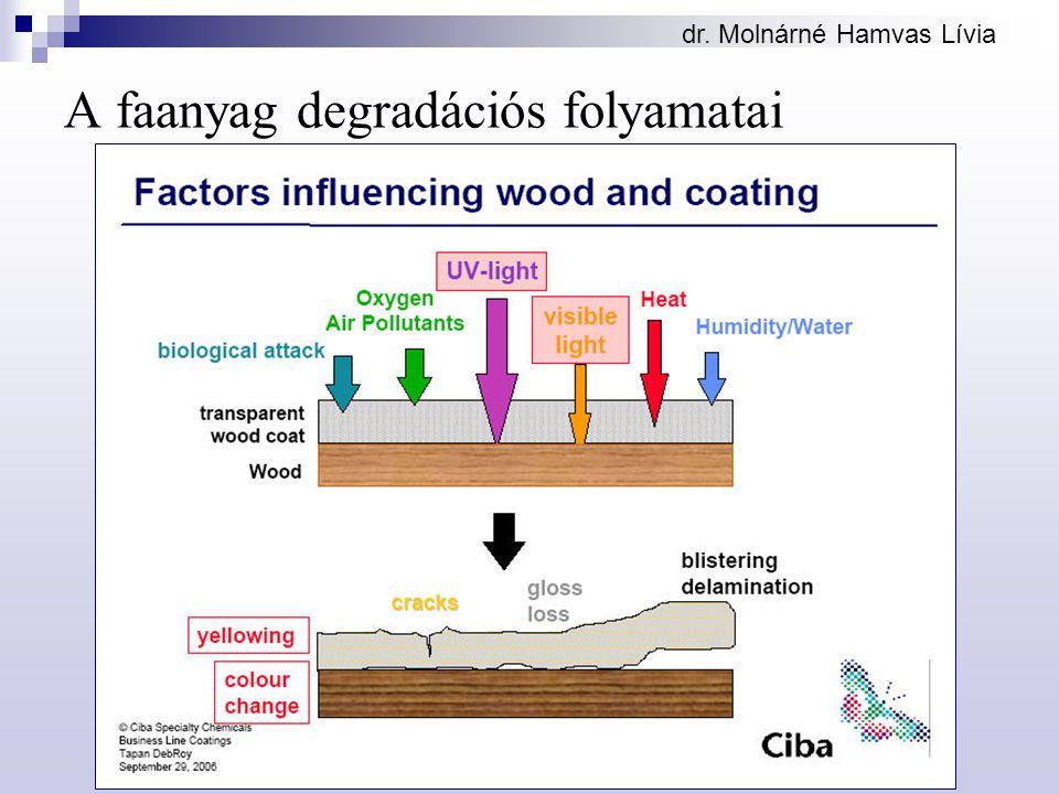 A faanyag degradációs folyamatai