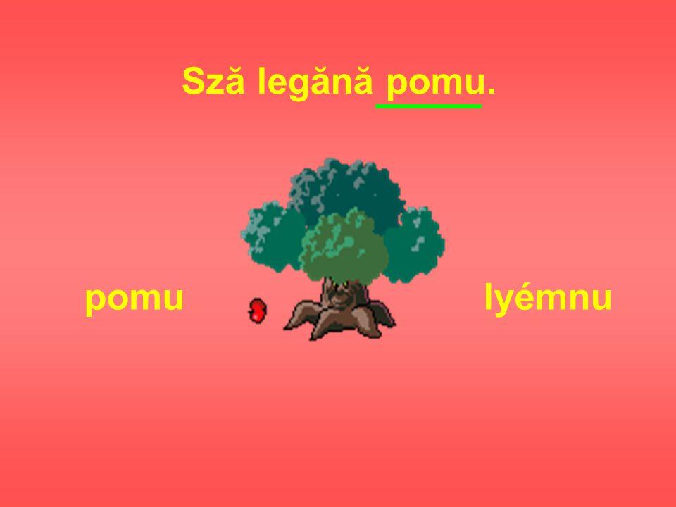 Sză legănă pomu. pomu lyémnu